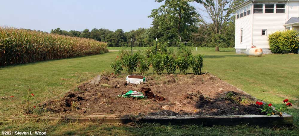 Main raised garden bed cleanup continues