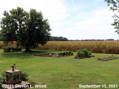 Our Senior Garden - September 15, 2021