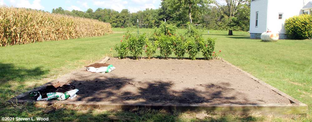 Main raised bed tilled and raked