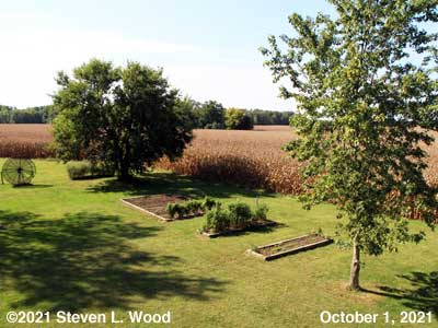 Our Senior Garden - October 1, 2021