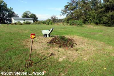 New compost pile and East Garden plot