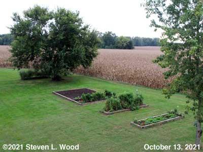 Our Senior Garden - October 13, 2021