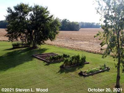 Our Senior Garden - October 20, 2021