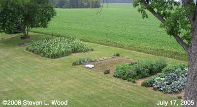 Garden plots in 2005
