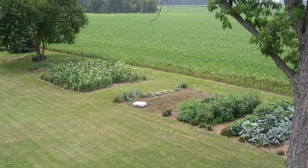 Garden - 2005