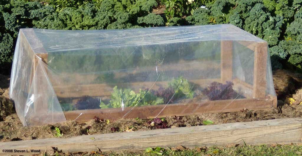 A Simple Cold Frame