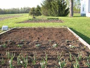 Soil prep done