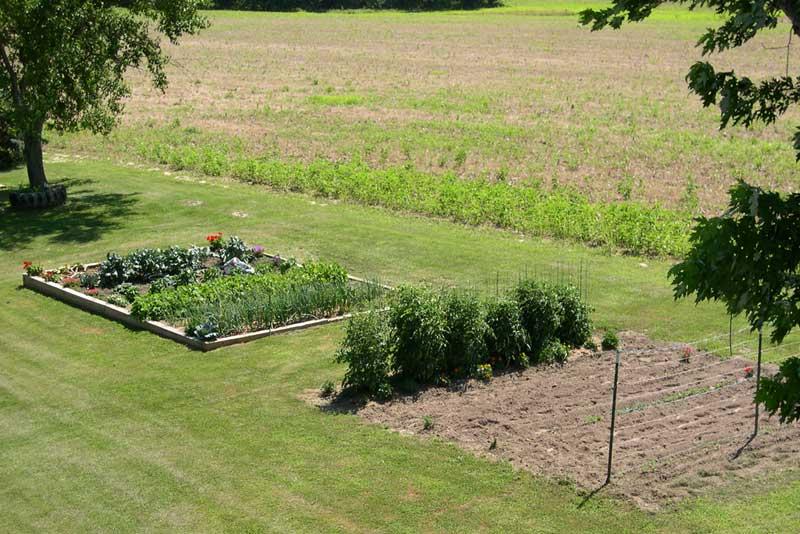 Main garden 090629