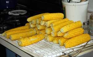 Sweet Corn Cooling