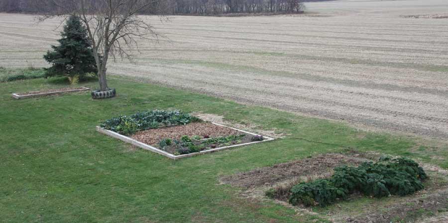 The Senior Garden - November 14, 2009