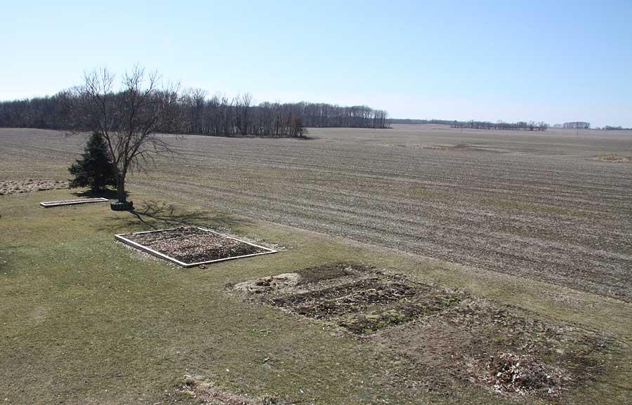 Our senior garden - 3/4/2010