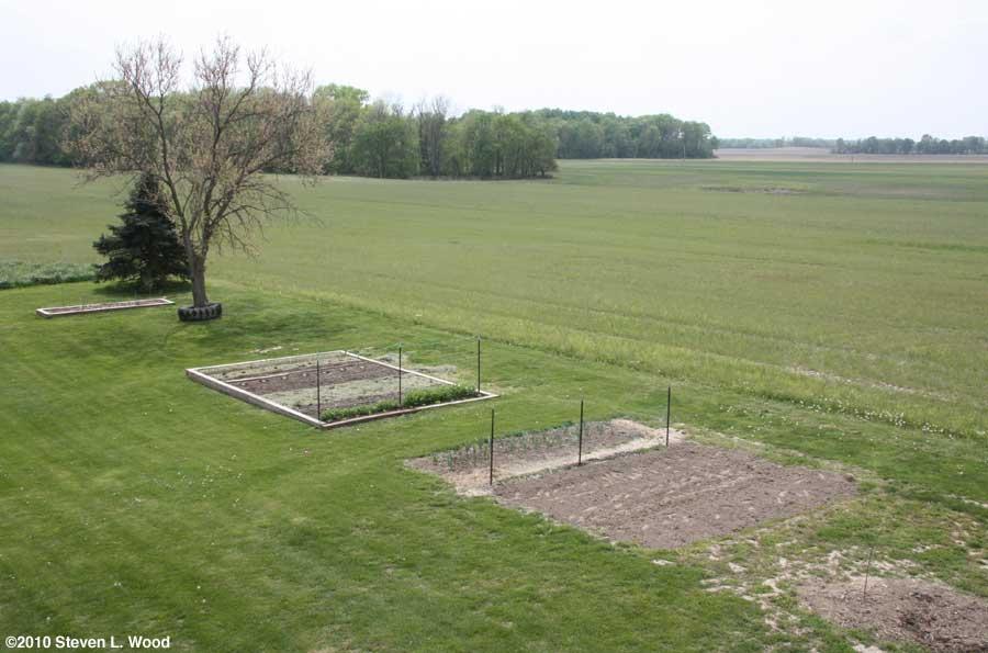 Our senior garden - 4/20/2010