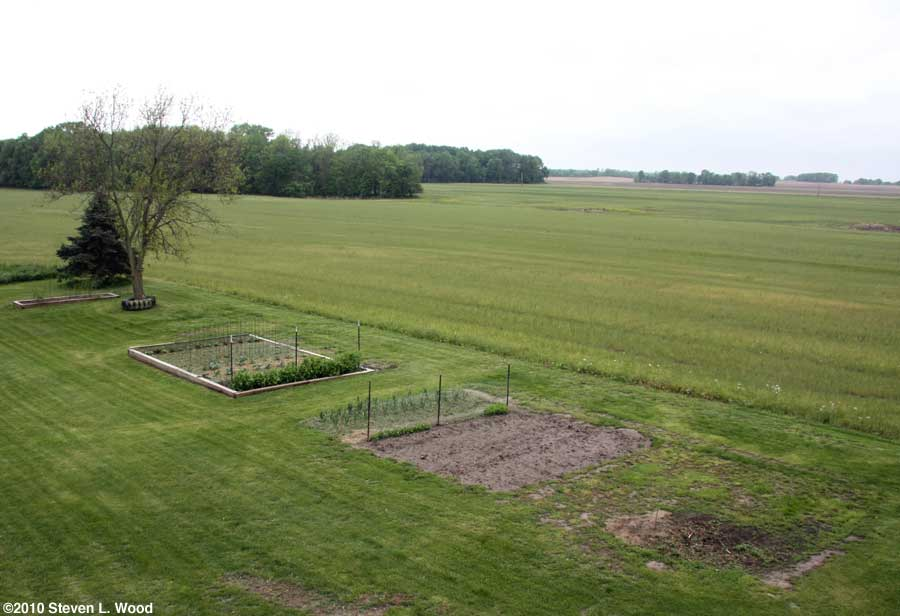 Our senior garden - 5/1/2010