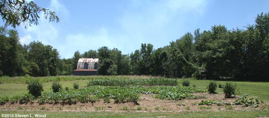 East Garden - July 2, 2010