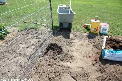 Dig a good hole