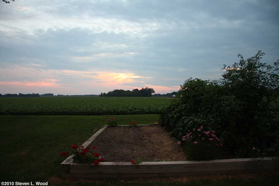 Sunset over senior garden