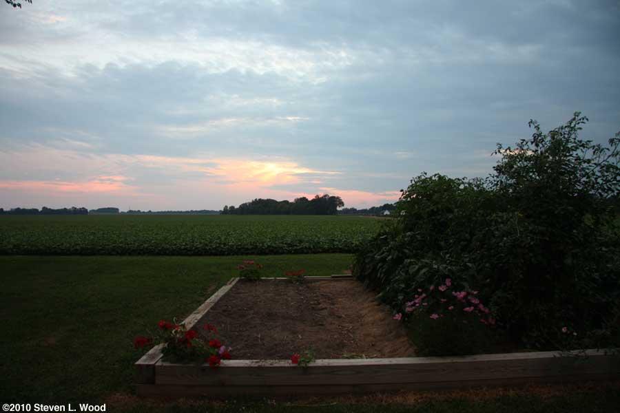 Sunset over senior garden