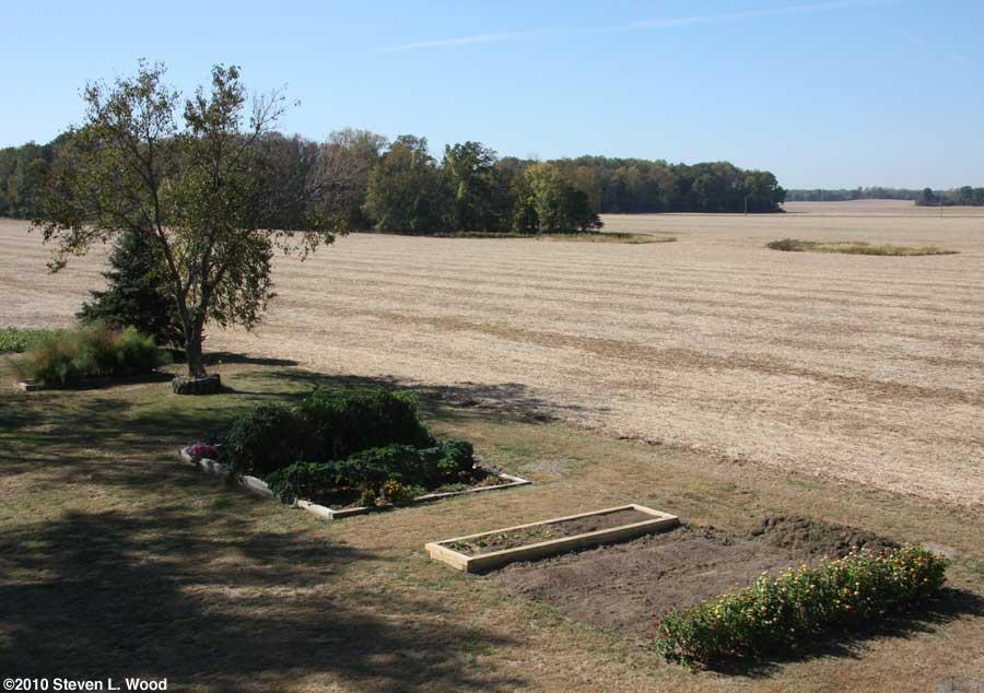 Our senior garden - 10/7/2010