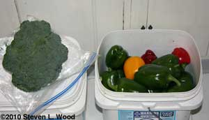 broccoli and peppers