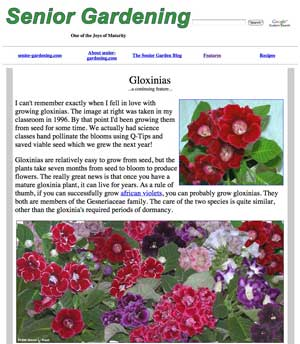 Gloxinia feature story