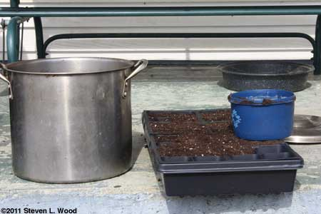 Filling the cells with potting soil