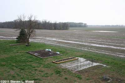 Standing water in field and garden