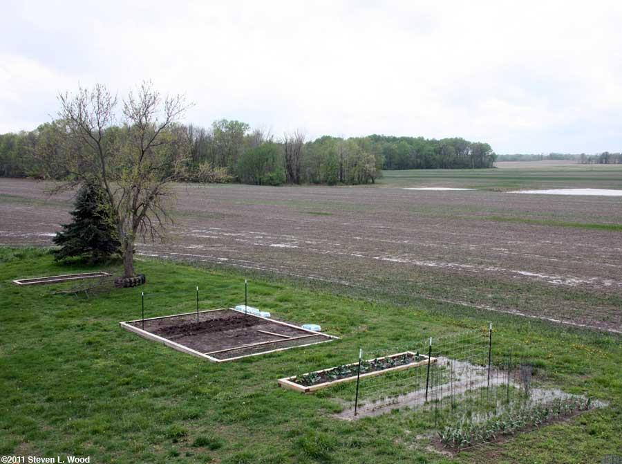 Our senior garden - 4/26/2011