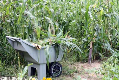 Corn knife and cart