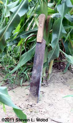 Corn knife