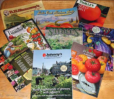 Seed catalogs arrayed