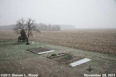 Snow on November 29