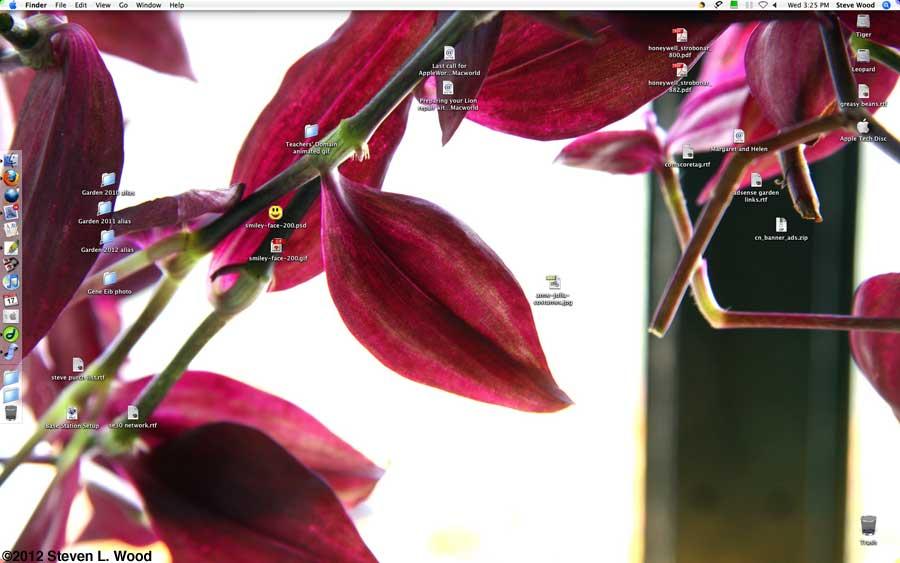 Wandering jew desktop