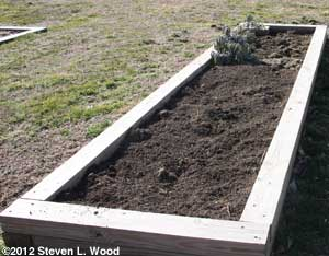 Compost added to raised bed
