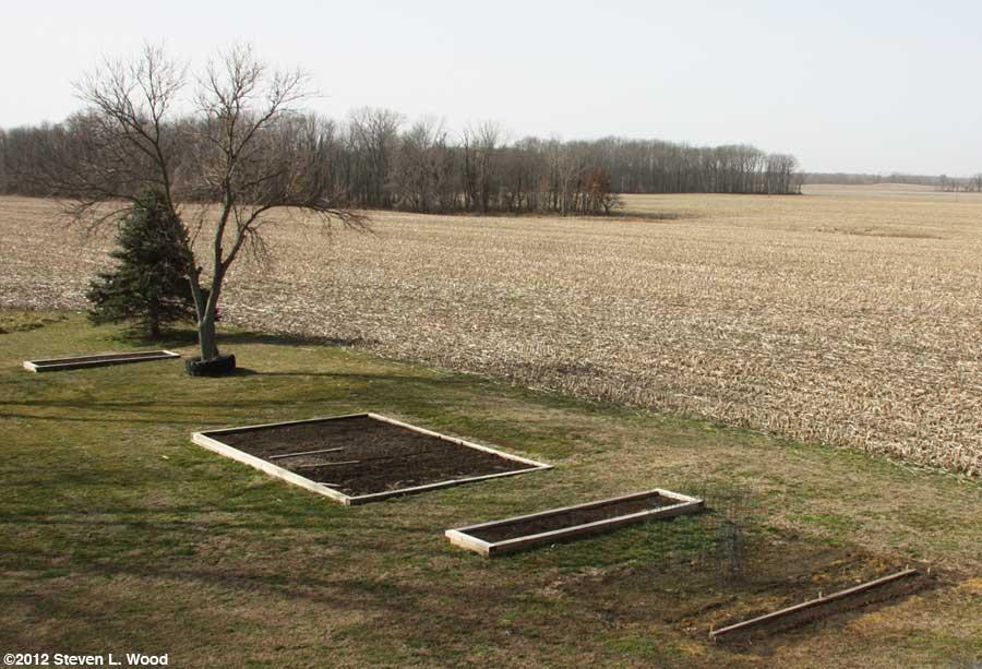 Our senior garden - 2/29/2012