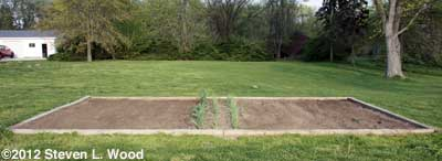 Main garden bed
