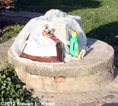 Cistern planter