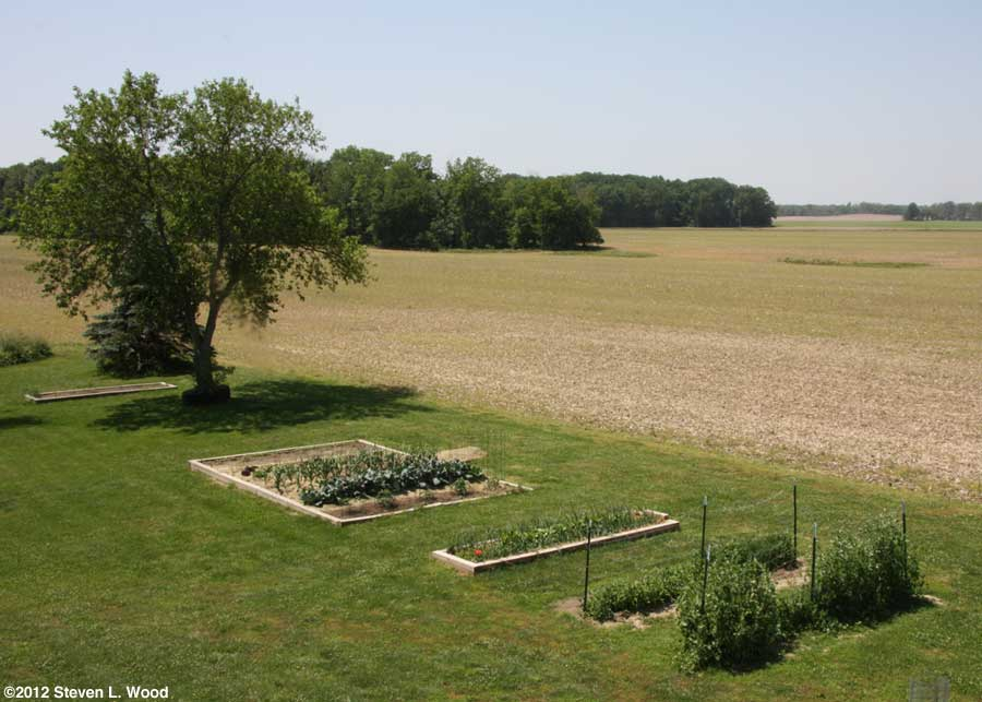 Our senior garden - 5/16/2012