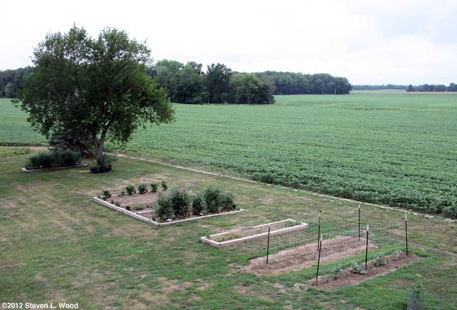 Our Senior Garden - 7/14/2012