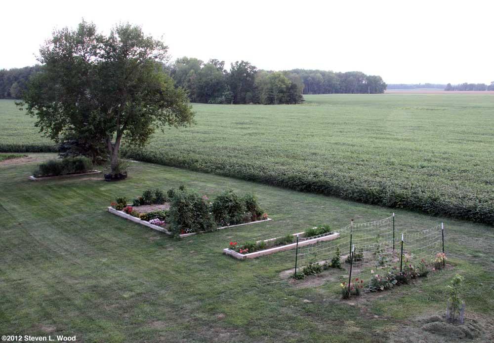 Our Senior Garden - 8/31/2012