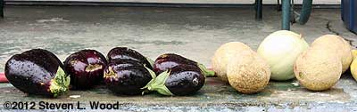 Eggplant and melons