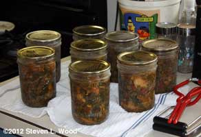 Canned kale soup