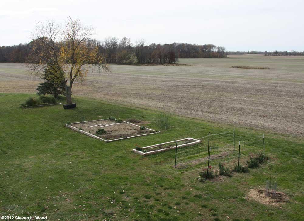 Our Senior Garden - 10/30/2012