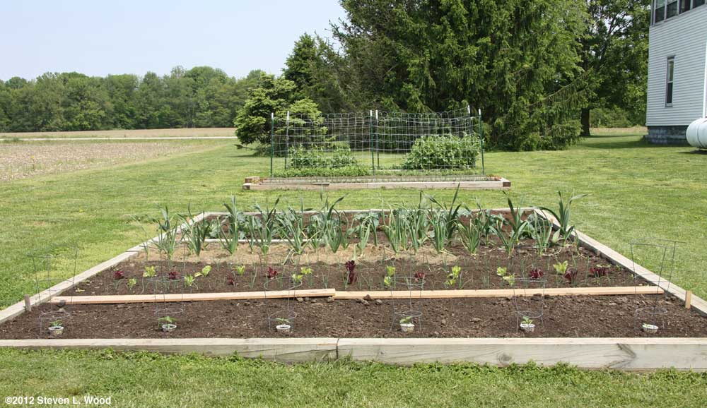 Raised beds in late April