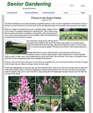 Flowers in the Senior Garden