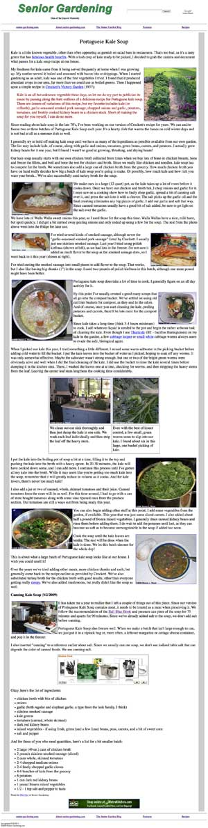 Kale Soup Recipe/Article
