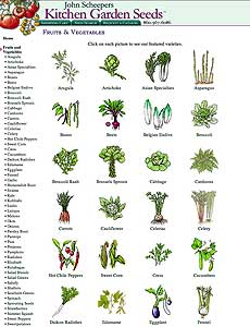 Kitchen Garden Veggies
