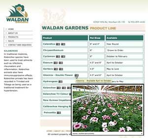 Waldan Gardens