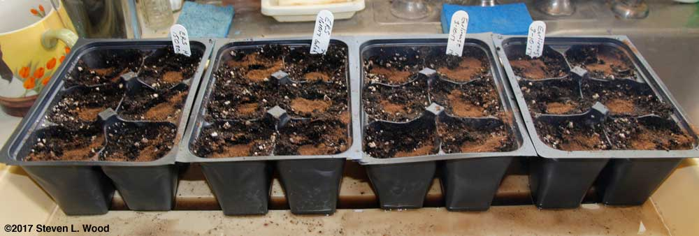 Inserts seeded to tomatoes and peppers