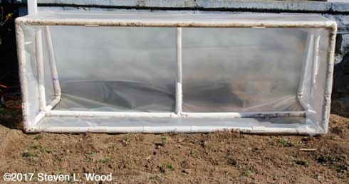 Cold frame open