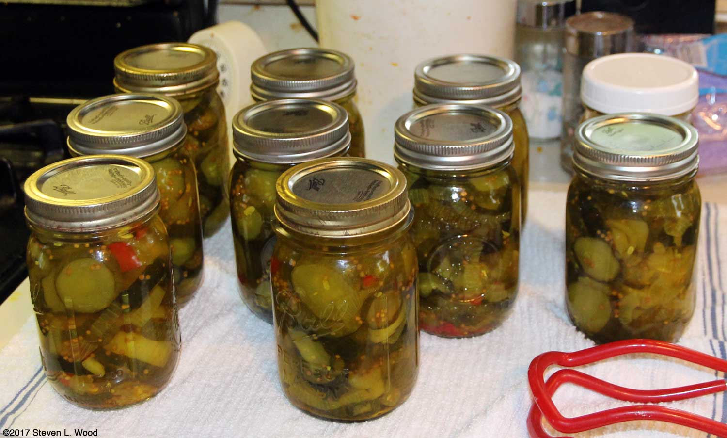 Ten pints of bread and butter pickles
